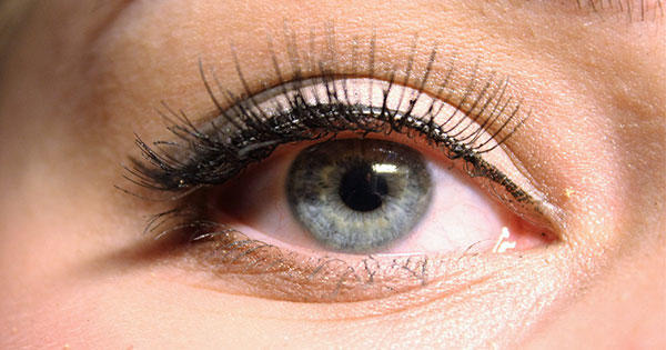 How to apply individual eyelashes more ccuart Image collections