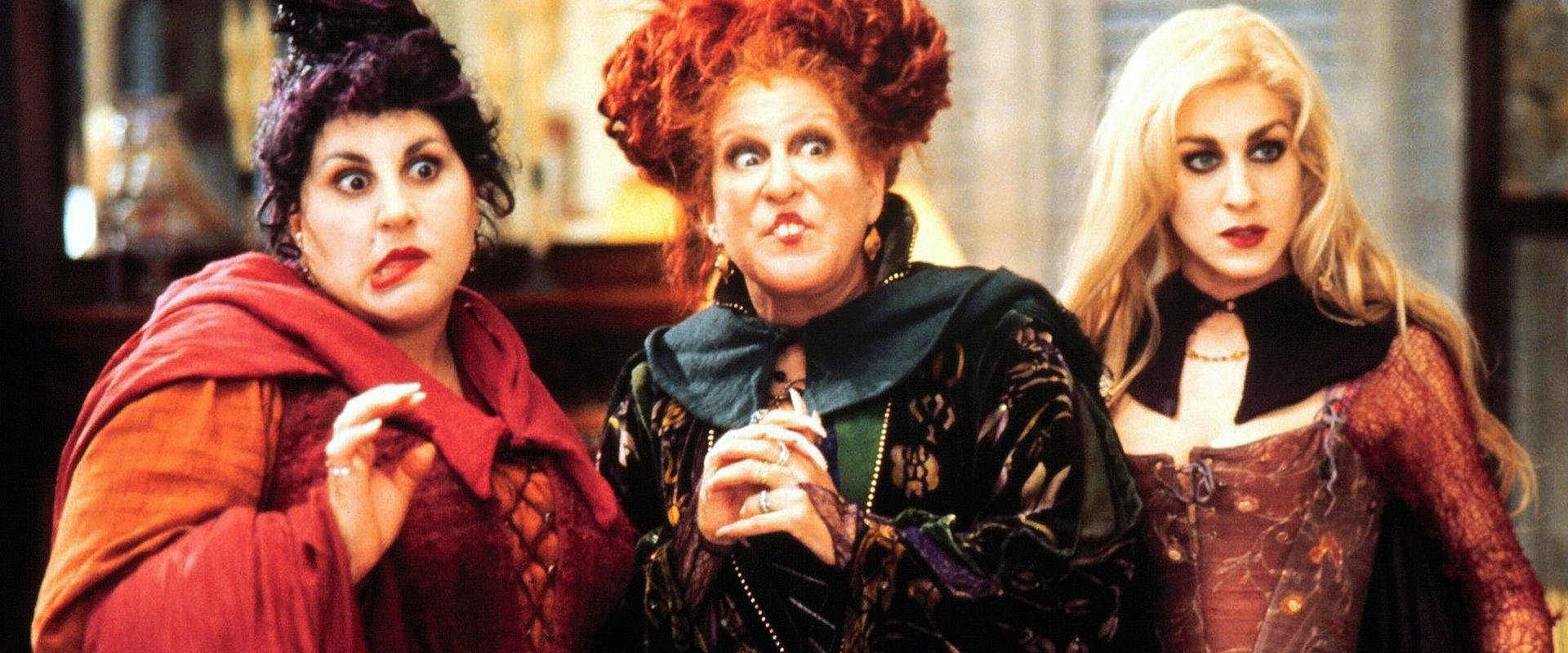 The witches of Hocus Pocus