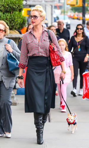 Get the Look: Katherine Heigl's Midtown Midi