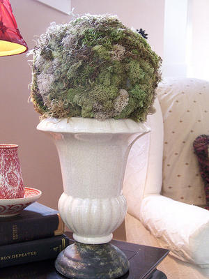 How to Make a Moss Topiary