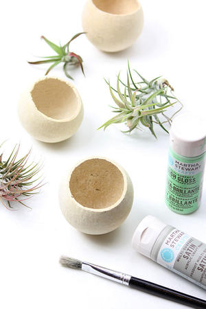 Make Your Own: Painted Air Plant Bell Cups