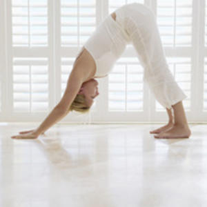 Downward-Facing Dating? Four Offbeat Yoga Trends