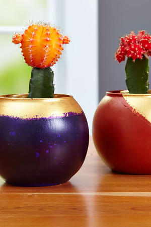 DIY Wedding Favors: Cactus Blooms