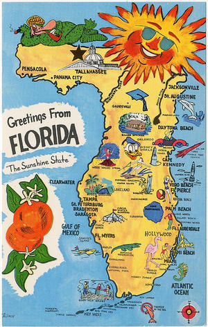 WTFlorida? Four Theories on Why Florida Is the Weirdest State