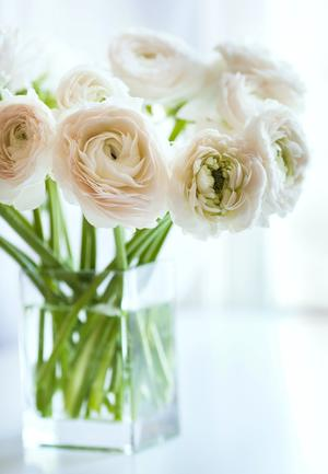 Tips for Decorating with Fresh Flowers
